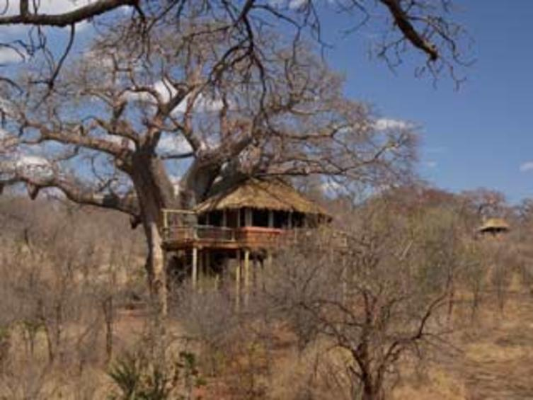 Elewana-Tangire-Tree-Hous-Cottages