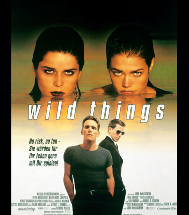 Denise-Richards-wild-things